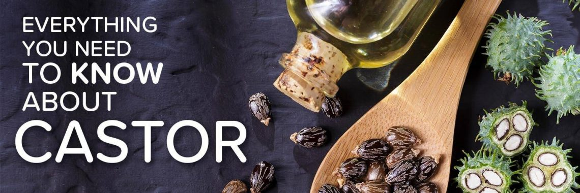 castor oil Everything you need to know